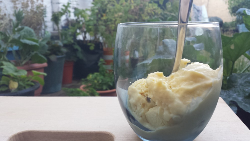 No Churn Mango & Blueberry Ice Cream
