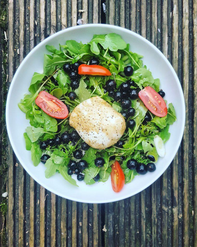 Blackcurrants and mozzarella salad