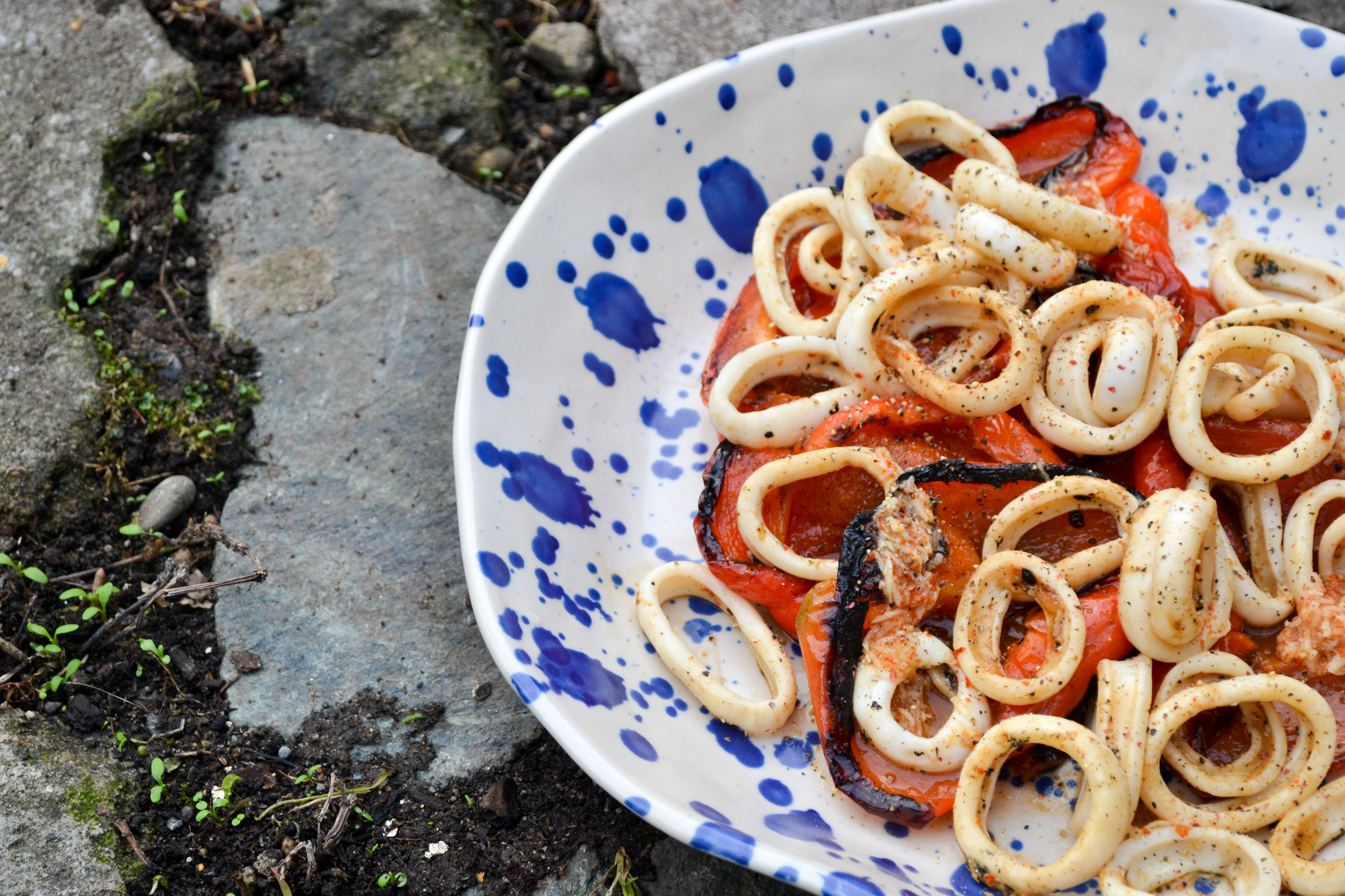 Grilled Squid and Peppers