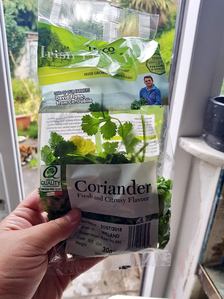 Coriander - Properfood.ie