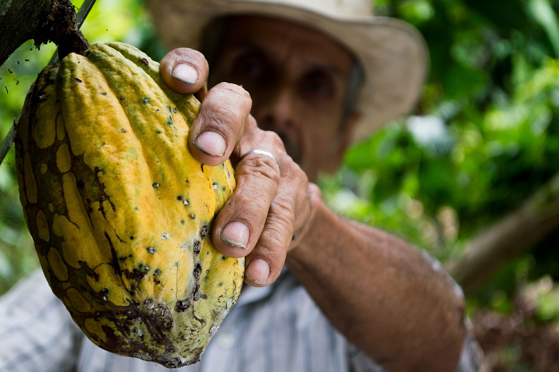 WHAT IS COLOMBIAN FOOD?