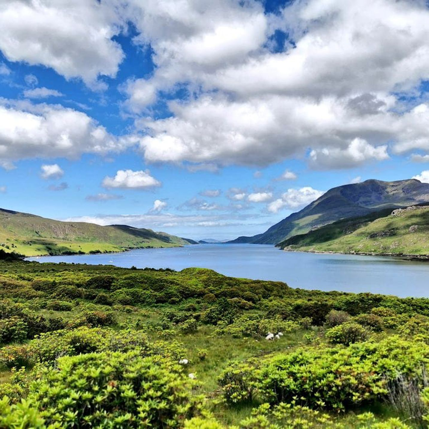 FORTY EIGHT HOURS IN COUNTY GALWAY